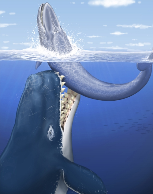leviathan eating whale
