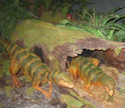 museum victoria qantassaurus
